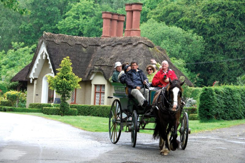 Auxiliary Plans Shades Of Ireland Trip Iv Newsletter